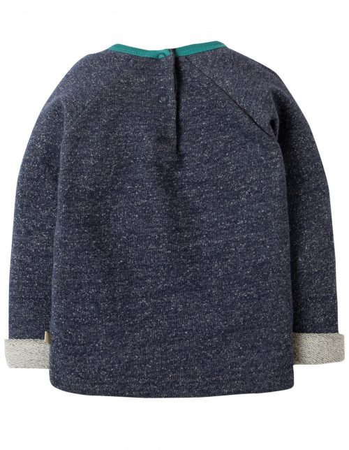 Frugi Langarm-Shirt Waschbär in blau